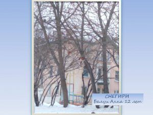 Зимний фотоконкурс в Юрге